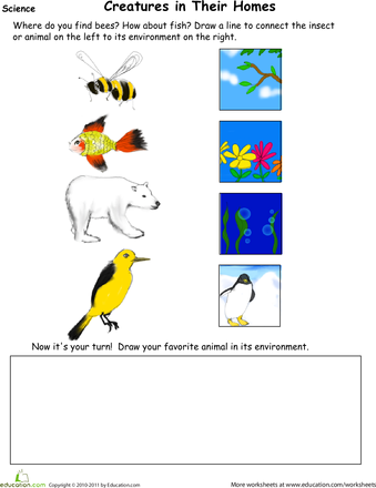 animal habitat drawing page science habitats science worksheets science lessons worksheets. Black Bedroom Furniture Sets. Home Design Ideas