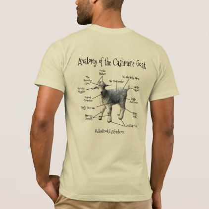 7f157b2aa Anatomy of the Cashmere Goat - Men's Tee $29.95 by HiddenBrookFarm - custom  gift idea