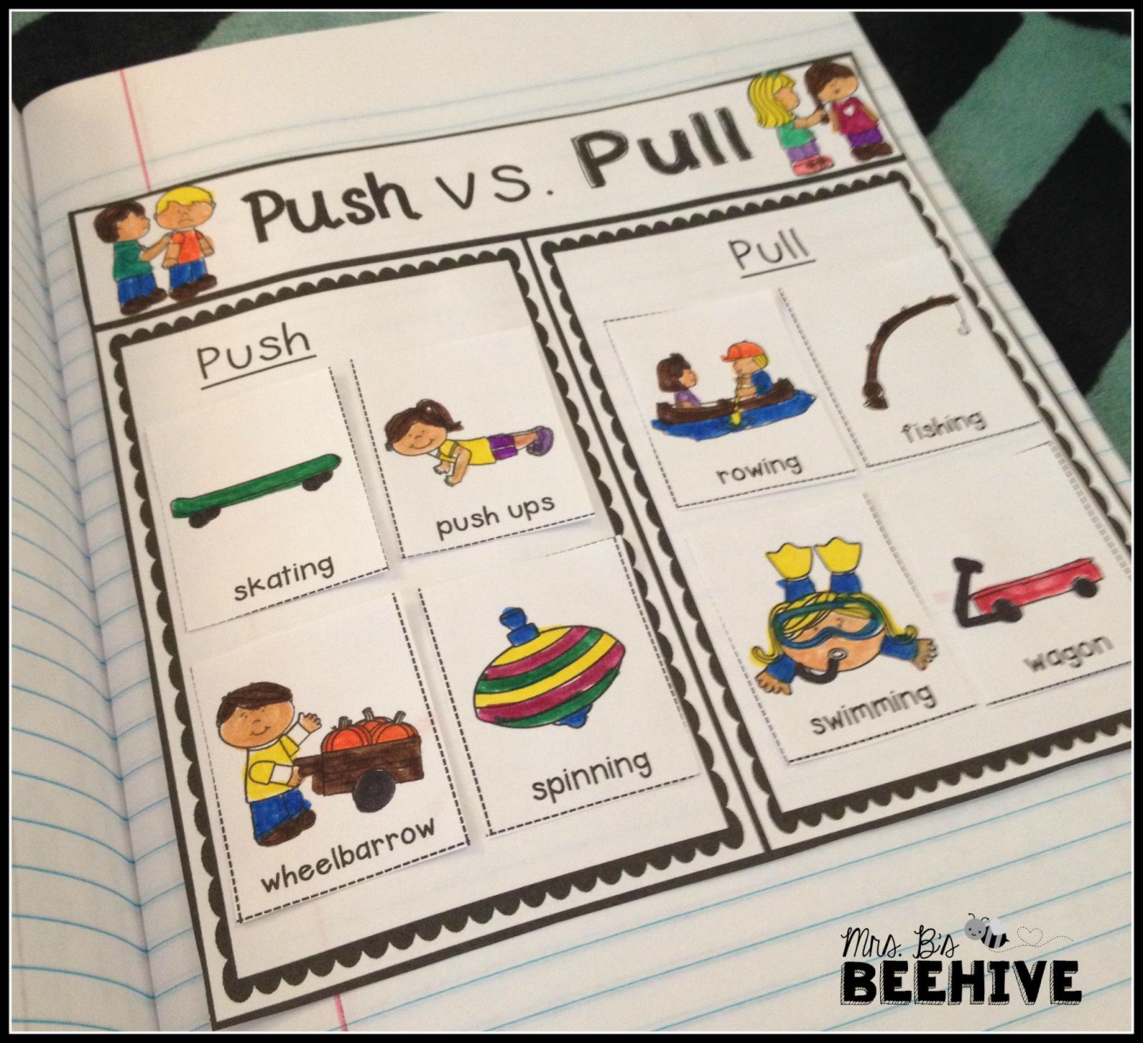 Kindergarten Science Interactive Journals And A Freebie