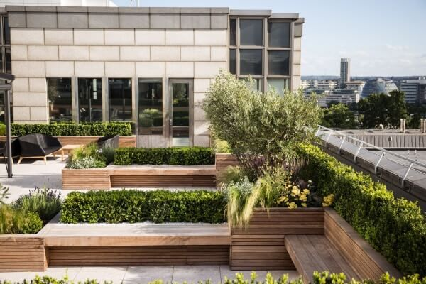 Roof Terrace Design Contemporary Terrace And Balcony Planters