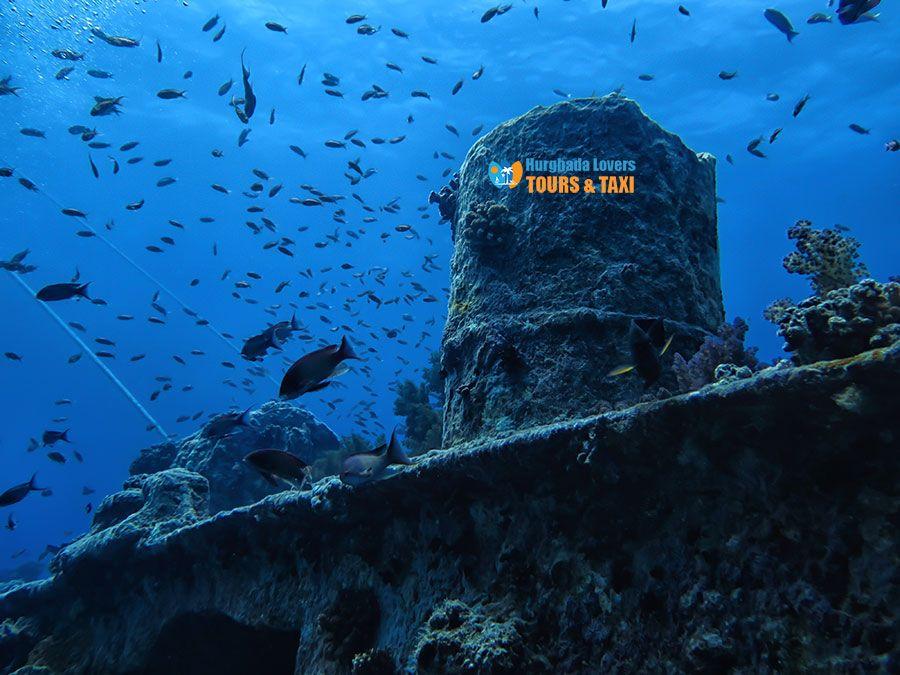 سفينة زيستل جورم في الغردقة اهم الاماكن السياحية الاثرية التراثية في مصر تحت البحر الاحمر Egypt Travel Hurghada Egypt Hurghada