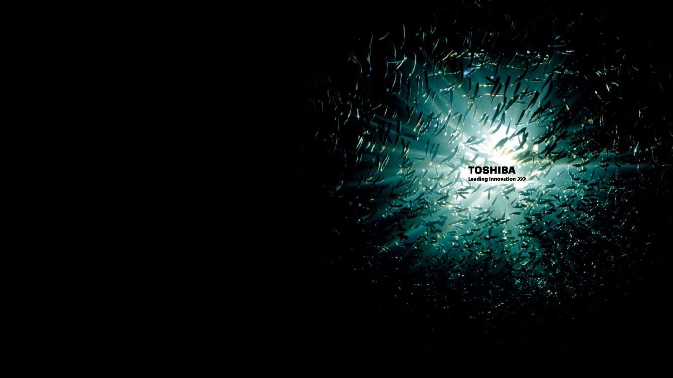 Toshiba Windows Wallpaper 1366768 Toshiba Wallpapers Free