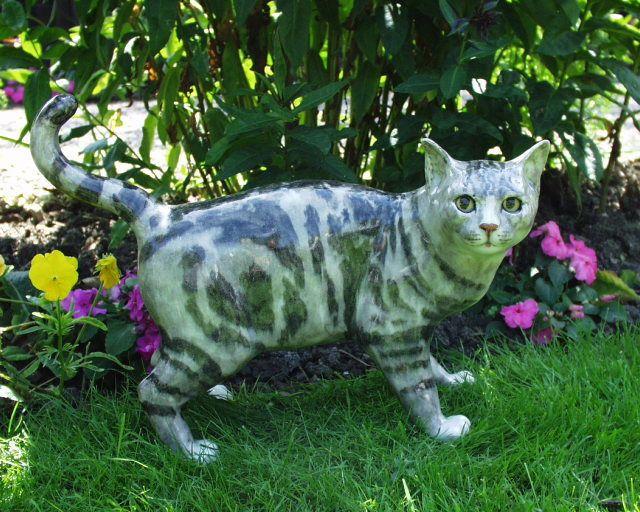 Lovely Winstanley Cat Kitten Size 2 Playful Sitting Tabby ...