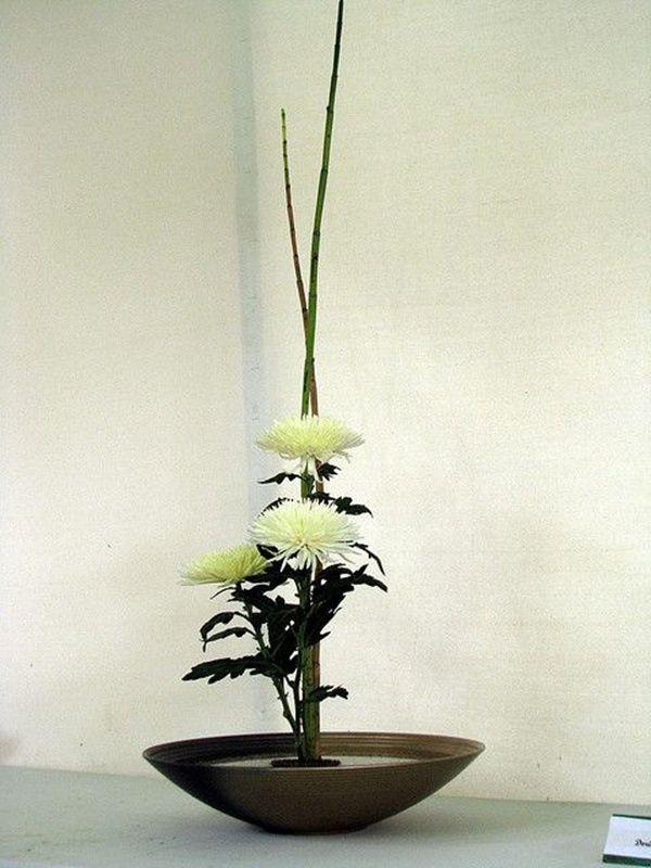 Pictures of japanese art flower arrangement ikebana