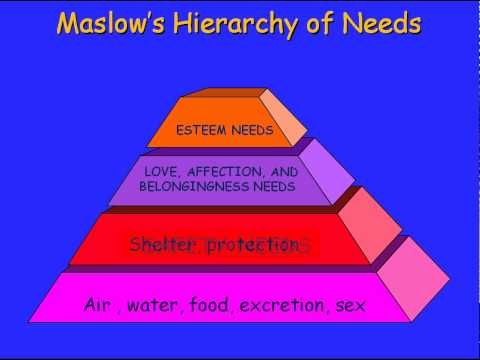 an introduction to maslows hierarchy of needs Relating these needs to individual goal setting instruments and maslow's hierarchy of needs model  introduction of the hierarchy model of needs in dementia.