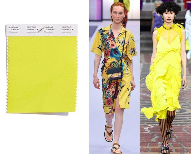 Colores de moda primavera verano 2018 meadowlark - Colores de moda ...
