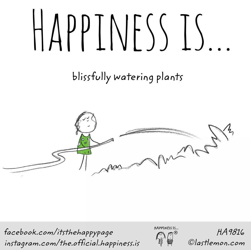 Happiness Is Blissfully Watering Plants Plantstrong Plantpowerz Garden Growyourown In 2020 Gardening Quotes Funny Happy Quotes Cool Words