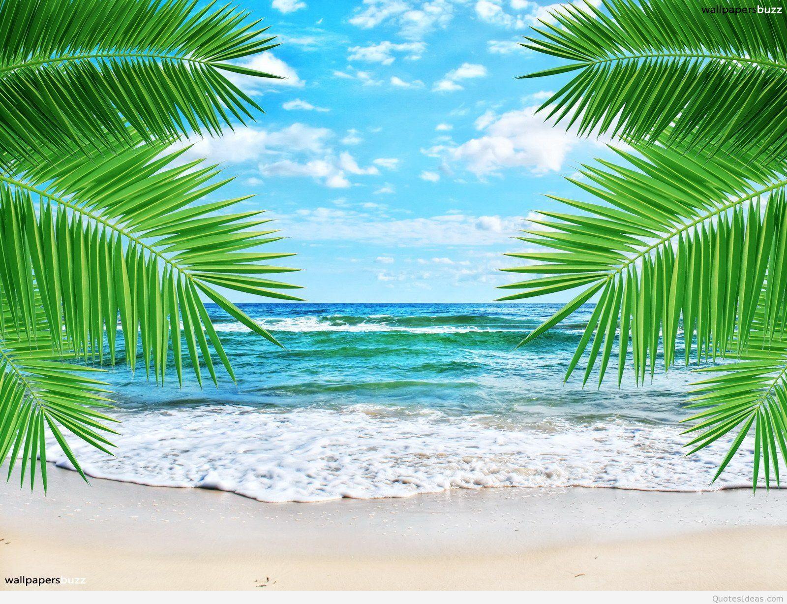 Summer Feeling Hd Desktop Wallpaper Widescreen High Definition 1920 1080 Summer Wallpaper 41 Summer Wallpaper Summer Desktop Backgrounds Sunset Wallpaper