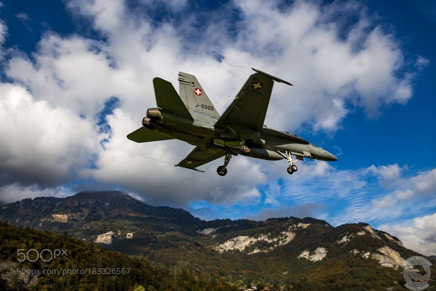 Hornets landing - 3 by MichalProkurat