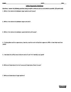 Cellular Organization Worksheet Biology Pinterest Worksheets