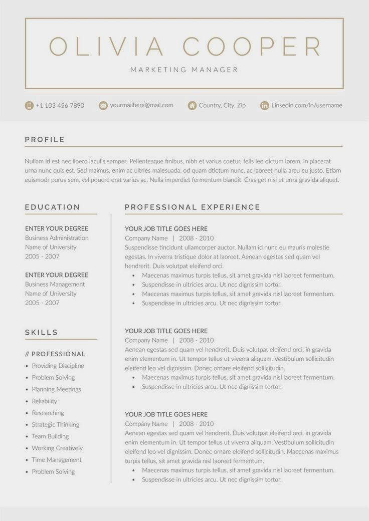 80+ Good professional 2019 in 2020 Resume examples