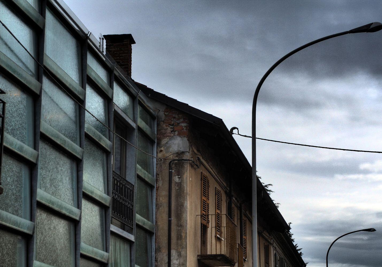 Galería de Floristería / ELASTICOSPA+3 - 6
