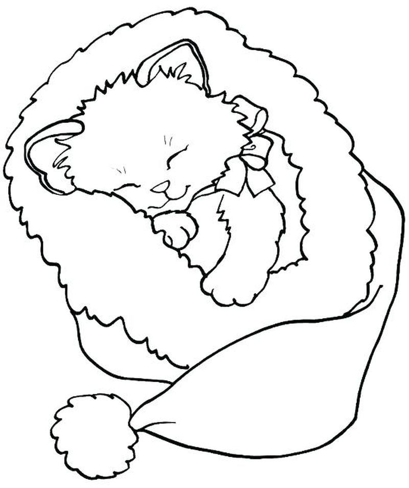 Kitten Coloring Pages For Kindergarten Di 2020 Buku Mewarnai Gambar Hewan Lembar Mewarnai
