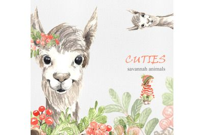 Download Llama and Baby graphics illustration | Graphic ...
