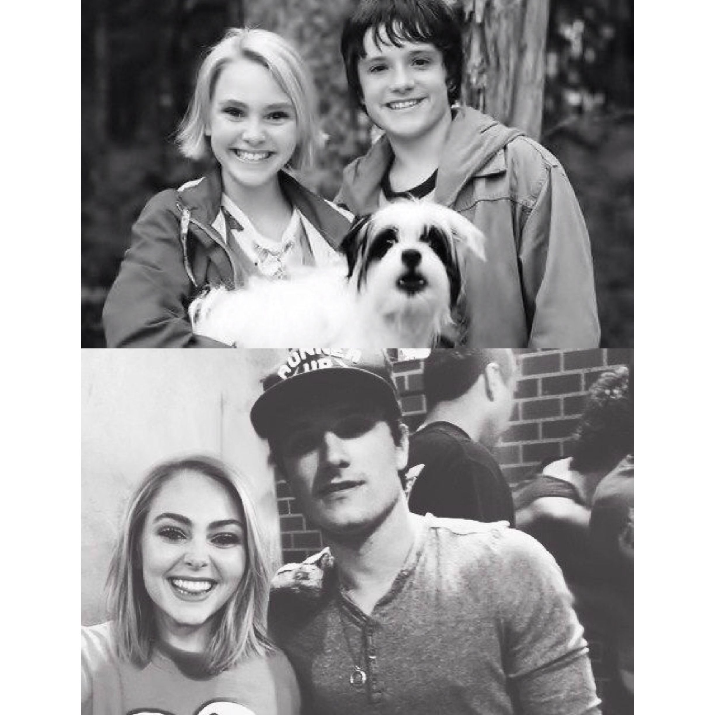 Can't contain my happiness Bridge to terabithia, Movies