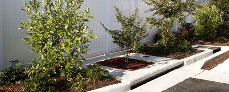Filterra Stormwater Bioretention Filtration System, tree box