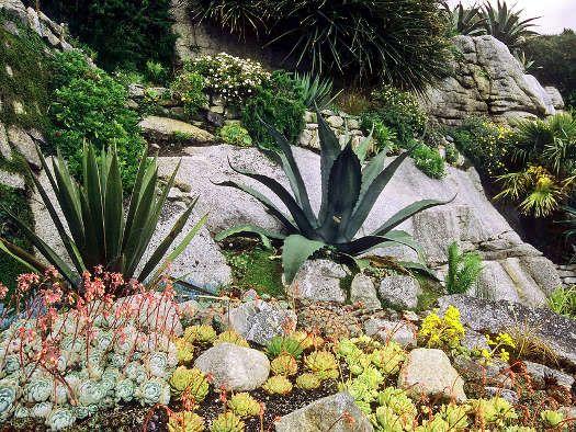 Cliquez pour voir la prochaine image | rocaille jardin | Pinterest ...