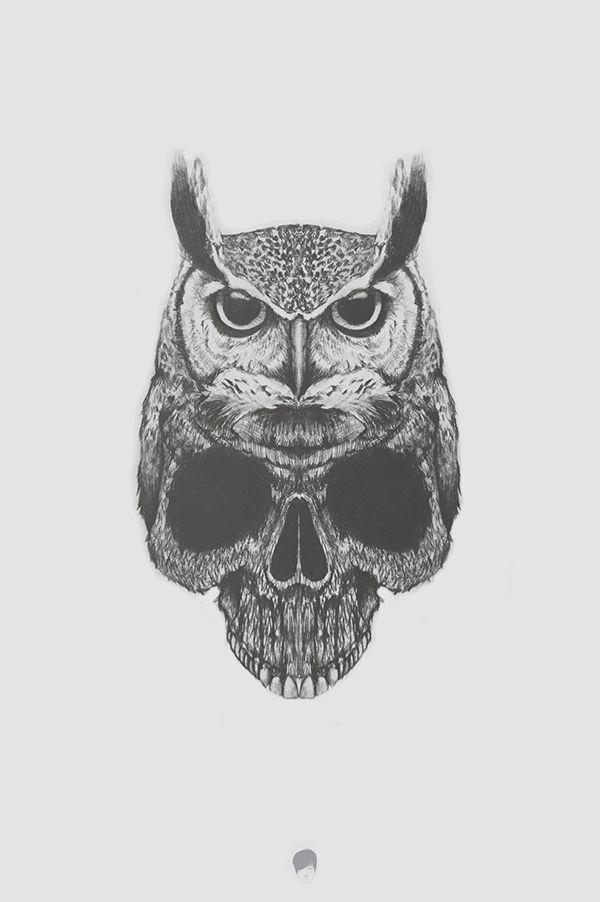 Owl by Alejandro Rodríguez #illustration #drawing #owl #skull