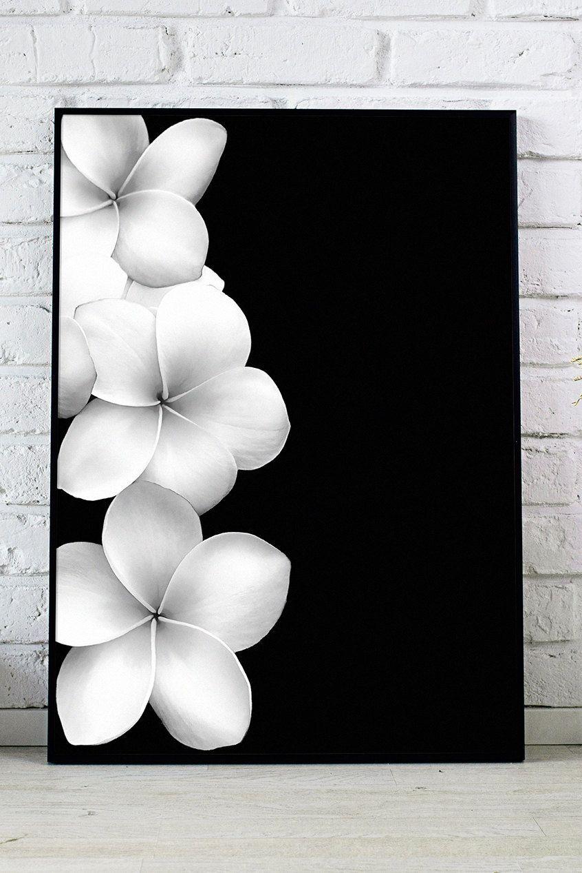 Black And White Flower Plumeria Print Minimalist Art Hawaii Flower Wall Art Botanical Print Modern Wall Decor Minimalist Floral Poster Floral Poster Flower Wall Art Minimalist Art