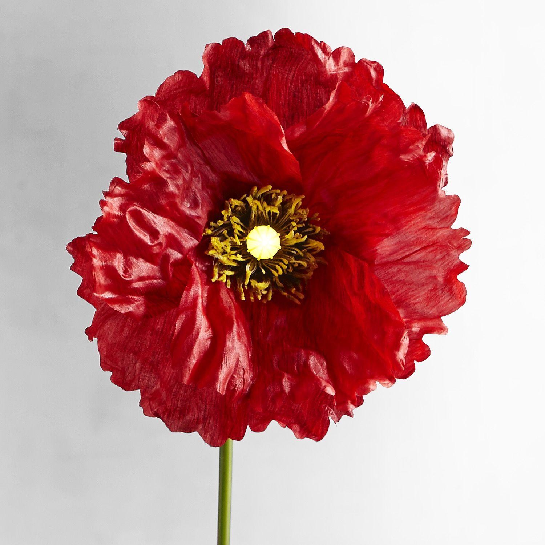 Bright blooms red faux poppy pre lit stem flowers gardens and plants bright blooms red faux poppy pre lit stem mightylinksfo