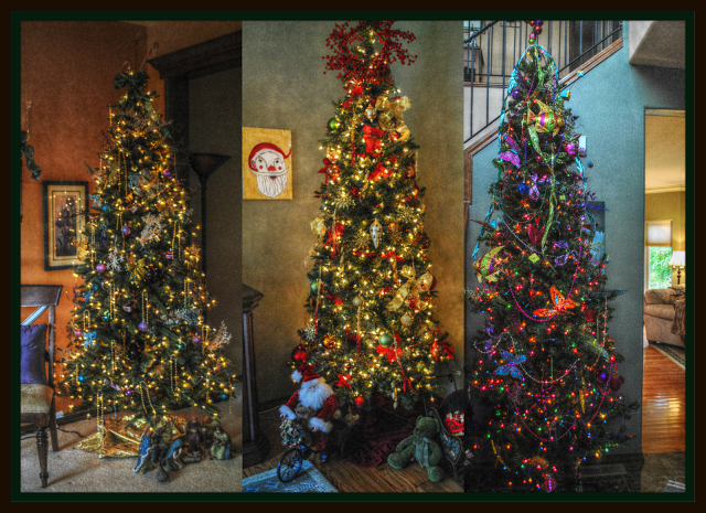My Three Christmas Trees All Decked Out And Waiting To Be