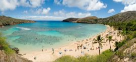 Awesome place to go snorkeling if you ever go to Hawaii!