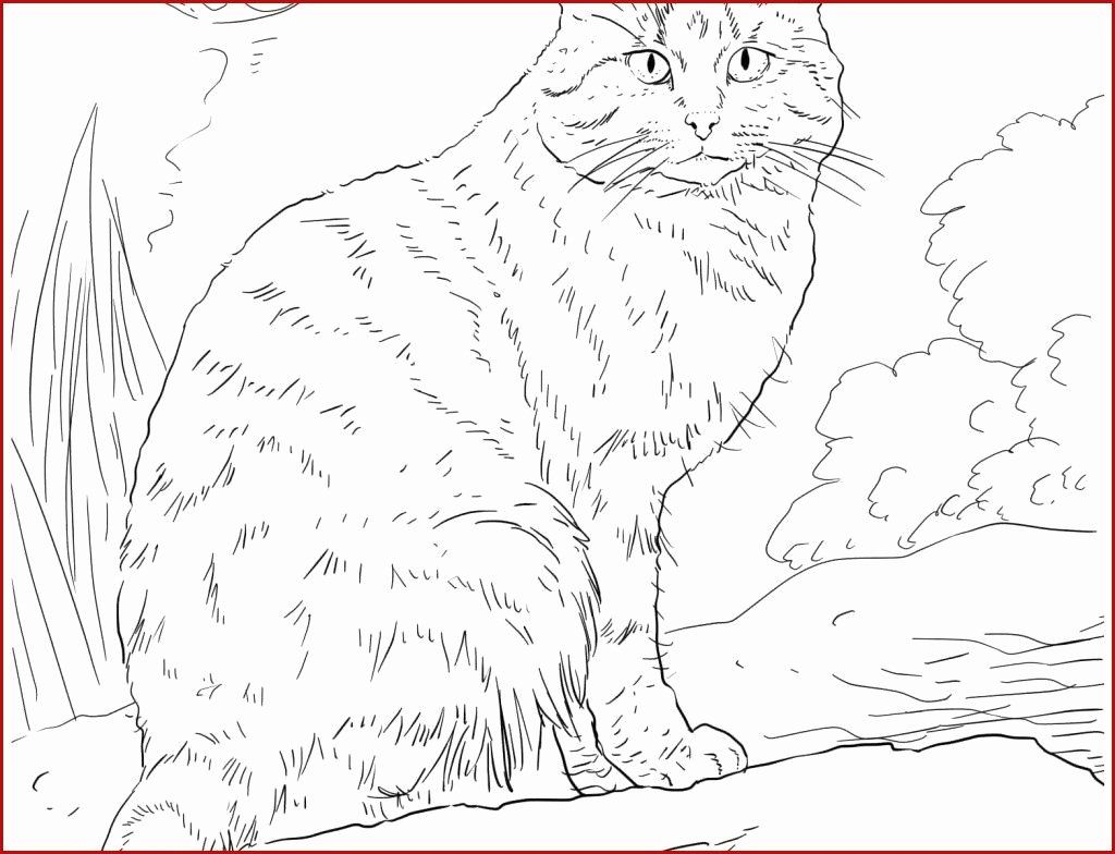 Printable Colorama Coloring Pages Beautiful Coloring Book World Coloring Pages Cats Free For Kids Dog Coloring Page Animal Coloring Pages Cat Coloring Page