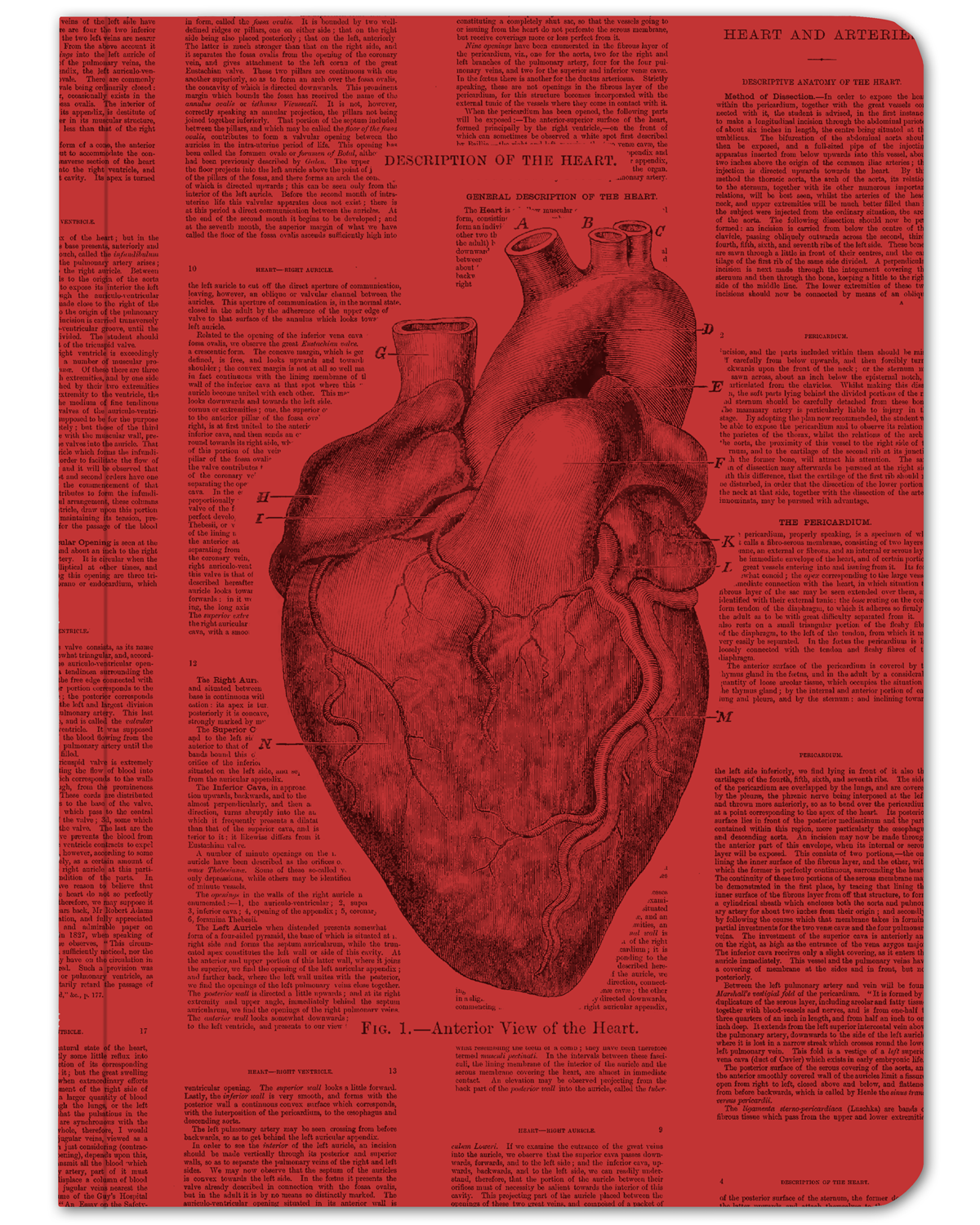 Anatomical Heart Hardcover Journal - Dot Grid | Anatomical heart ...