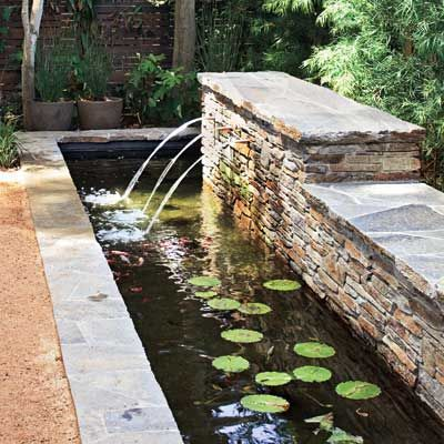 Everything You Need To Know To Build The Perfect Backyard Pond Bassin De Jardin Fontaine De Jardin Amenagement Jardin