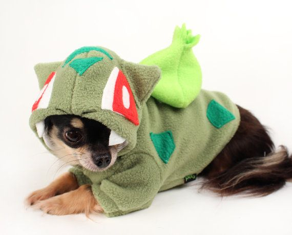 Dog Costume Inspired By The Character Bulbasaur From Pokemon Go
