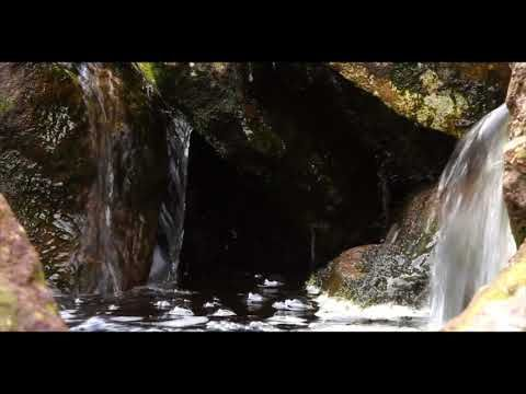 Tiny Forest Waterfall with Nature Sounds of Relaxing Birdsong-Sleep