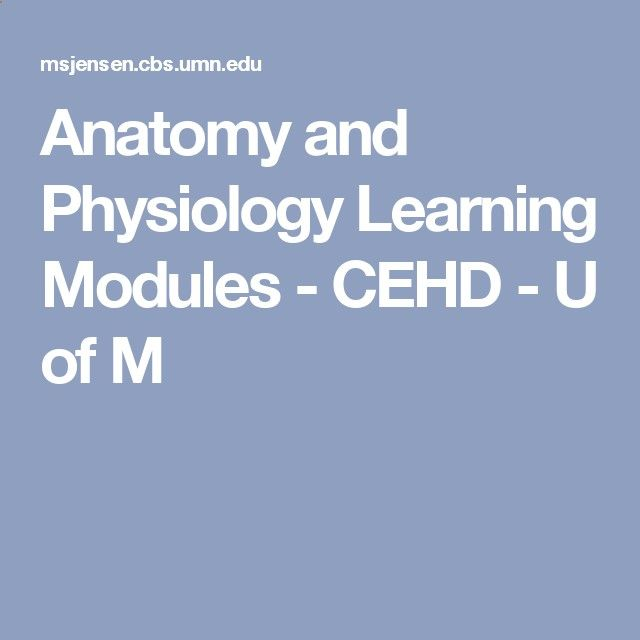 Anatomy and Physiology Learning Modules - CEHD - U of M | Health ...