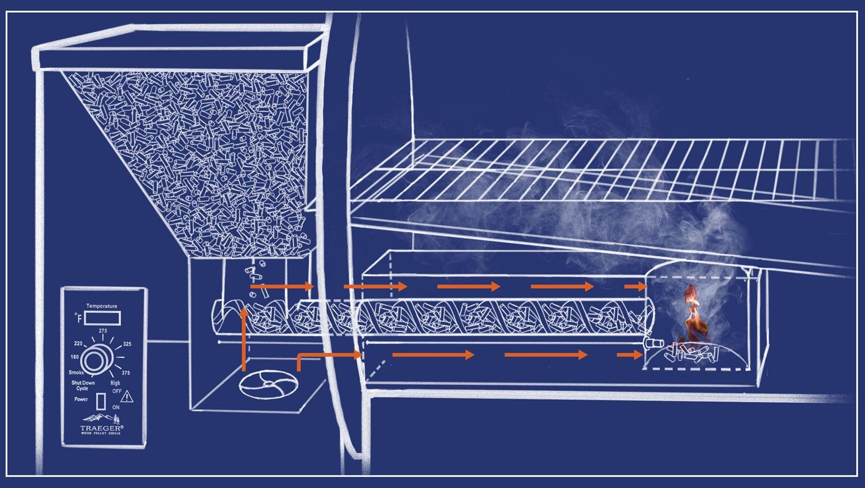 Traeger Scout Diagram In 2020 Wood Pellet Grills Traeger Digital Thermostat