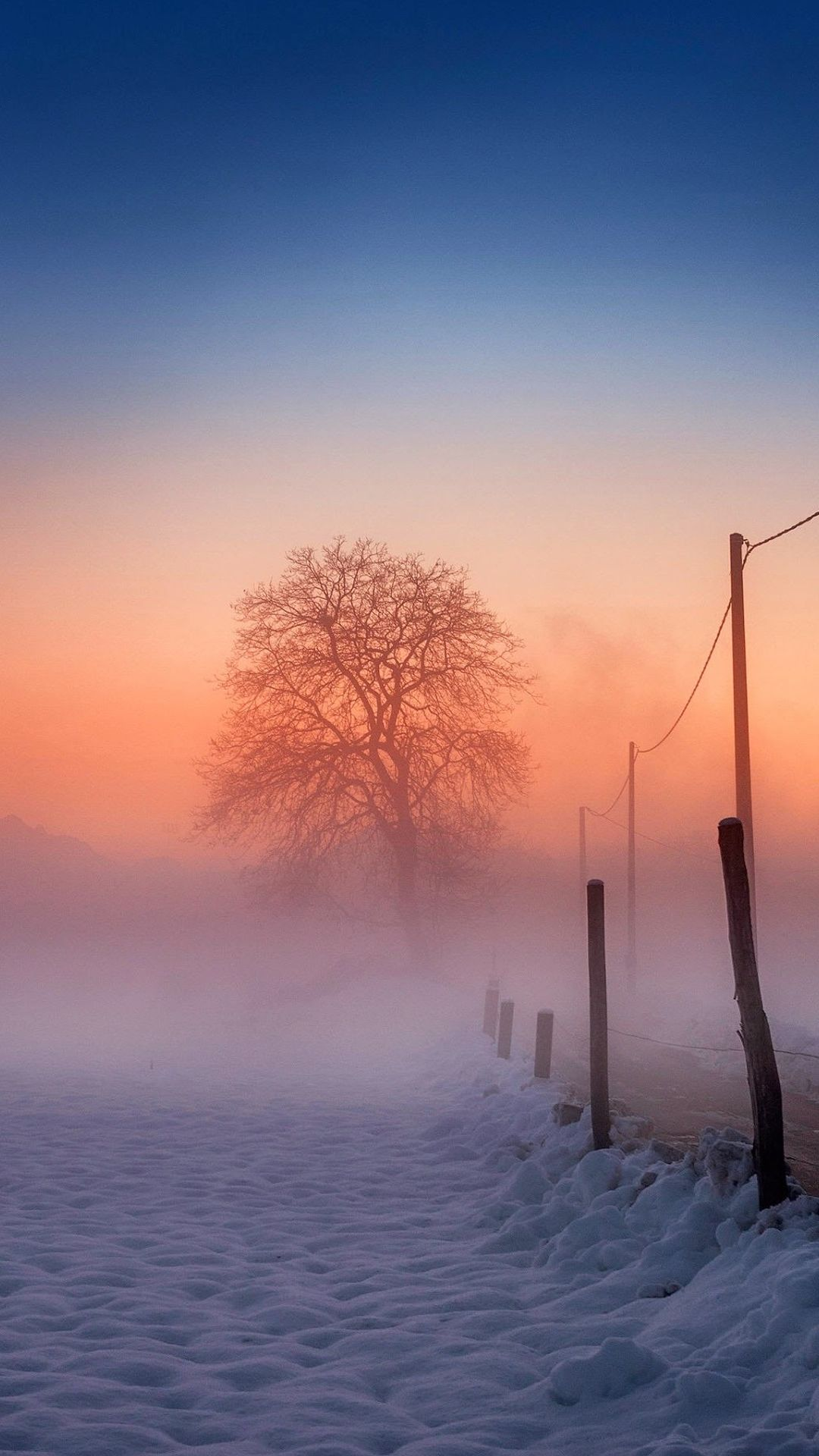 Winter Scene Fog Glow Iphone 6 Plus Wallpaper 冬の景色 冬の