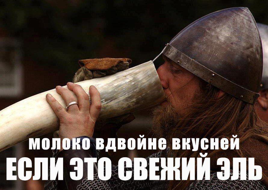 Демотиваторы для викингов