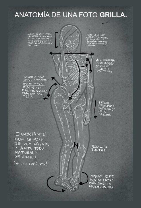 Anatomía de una foto grilla... por premios Hetores | Fun & Stuff ...