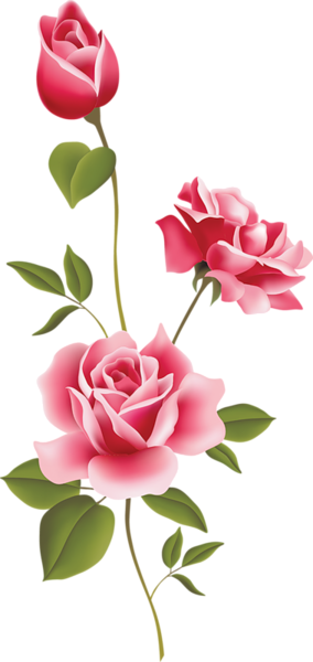 pink roses clip art