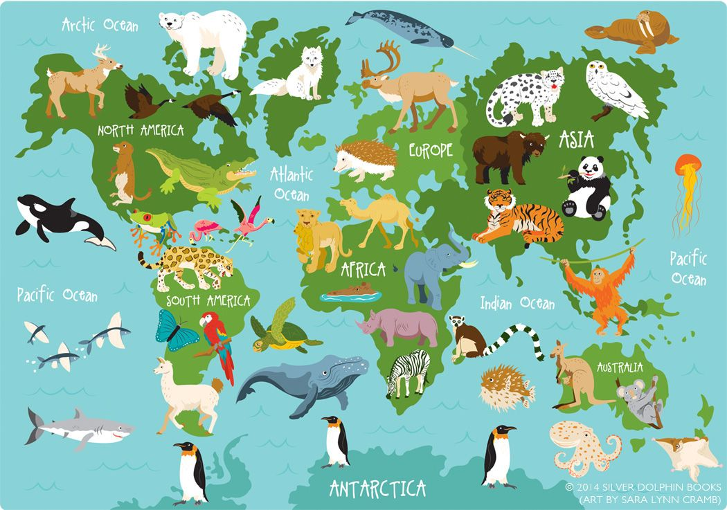 Animal world map artwork used with permission from silver dolphin animal world map artwork used with permission from silver dolphin books readerlink gumiabroncs Choice Image