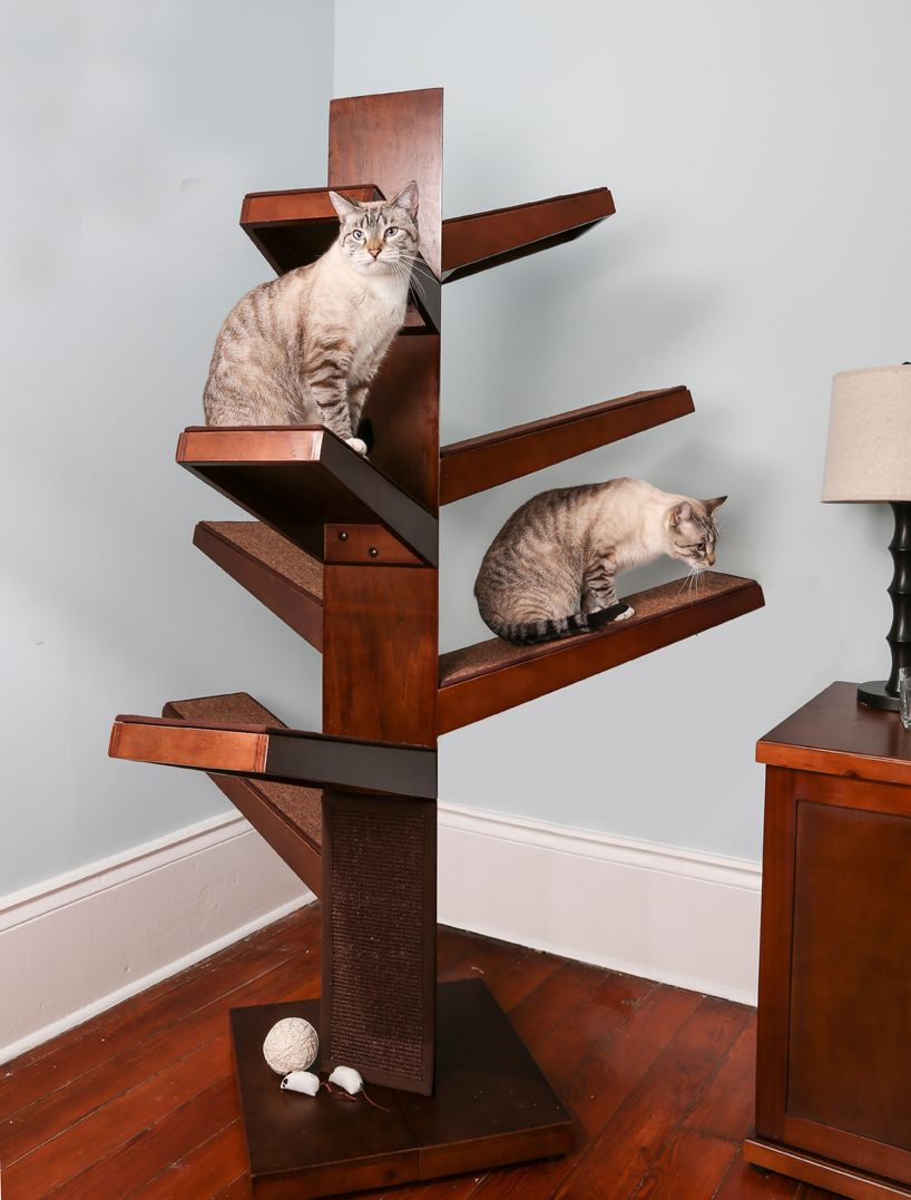 The Catalpa Cat Tree From The Refined Feline Redefines Feline Furniture.  Its Steppped Shelf Design Is Perfect For Multi Cat Homes.