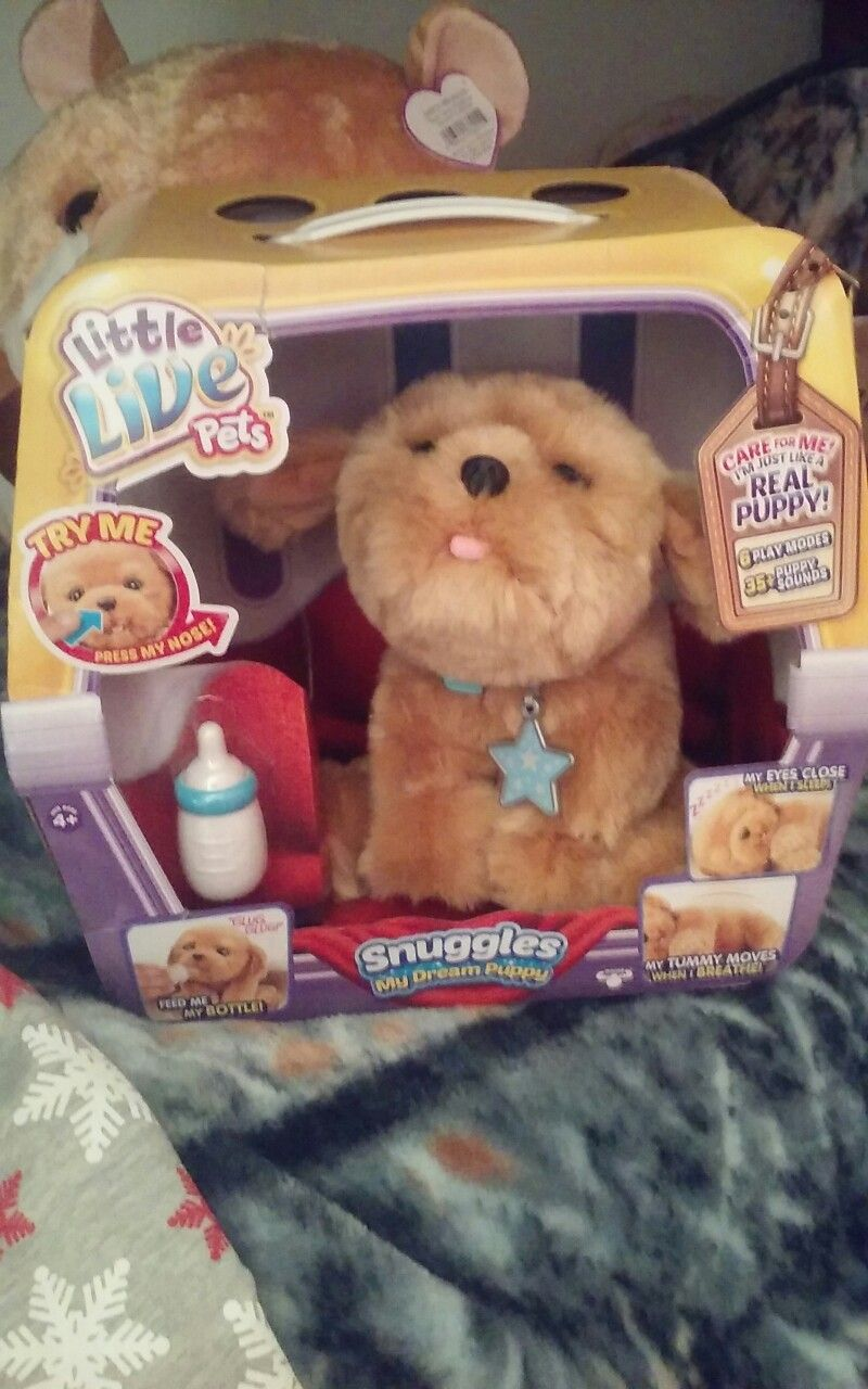 Merry Chistmas Every One And This Is What I Got For Christmas Yay Little Live Pets Cute Toys Merry Chistmas