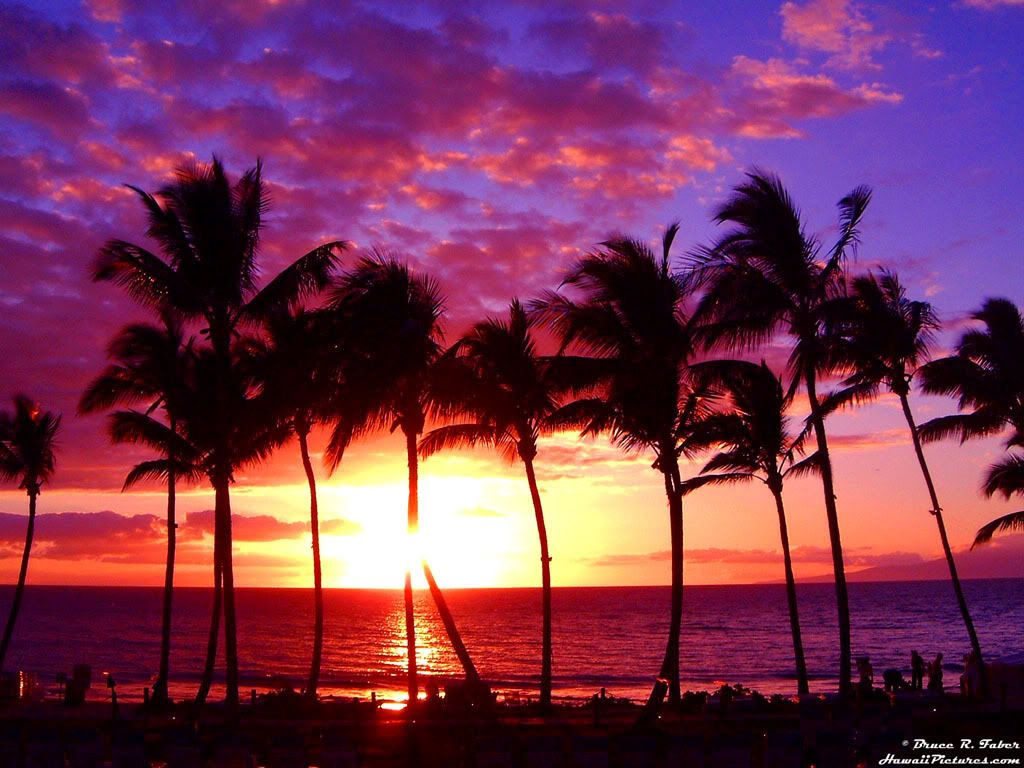 Awesome Hawaii Sunset Wallpaper Com Best Wallpapers Makes Your Dream Wedding With Beach