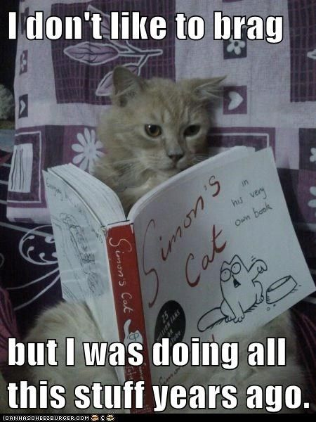 12 Cats Who Are Serious About Reading Cat Reading Cats Cat Books