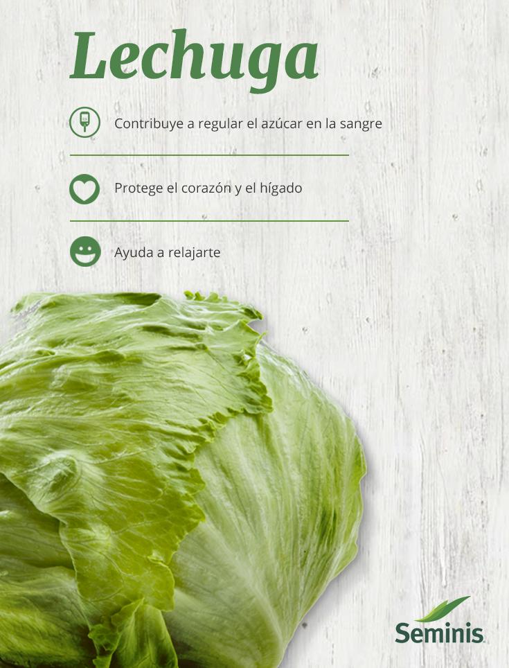 La Lechuga Es Un Vegetal Con Muchos Beneficios Inclúyela En Tu Próxima Ensalada Y Aprovecha Las Vitaminas Y Vitaminas Y Minerales Salud Y Nutricion Vegetal