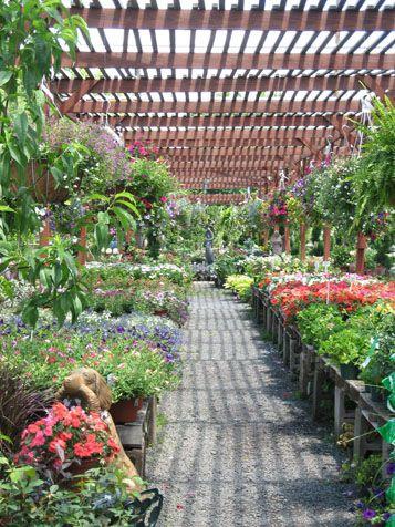 Nursery At Eisele S Garden Center Bergen County Tree Nurseries Plant In Nj Top Soil Trees Shrubs Plants