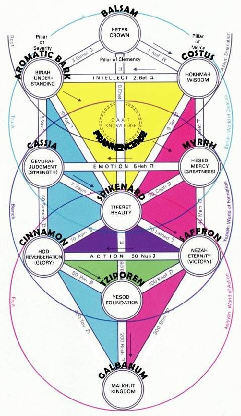 Kabbalah Tree Of Life Colors / The tree of life is the primary mystical symbol of kabbalah.