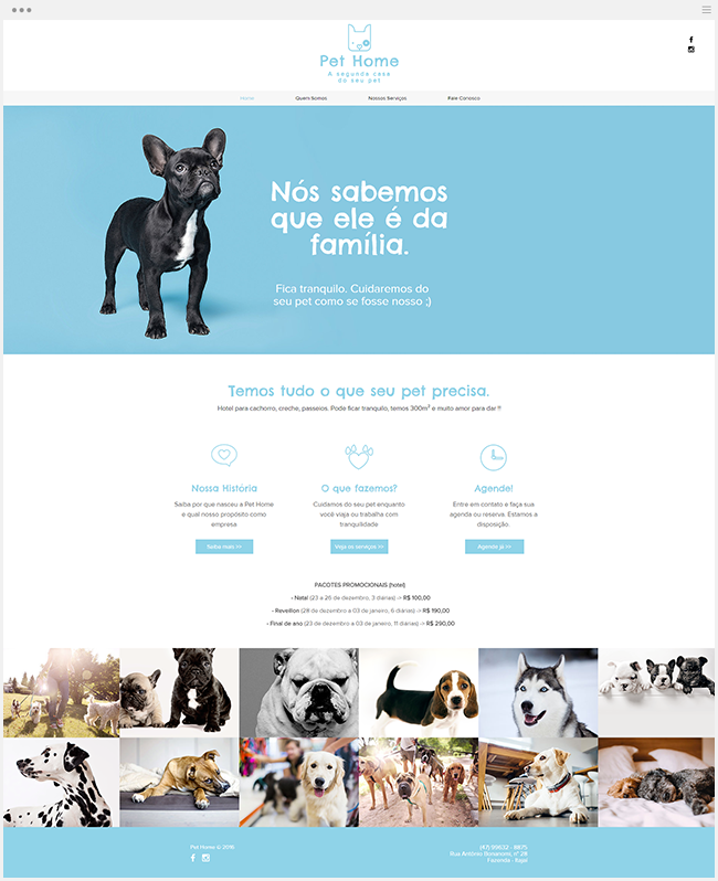 Pet Home Hotel For Dogs Dog Hotel Pet Home Hotel Website