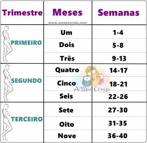 Tabela Gestacional Convertendo Semanas Em Meses E Meses Em