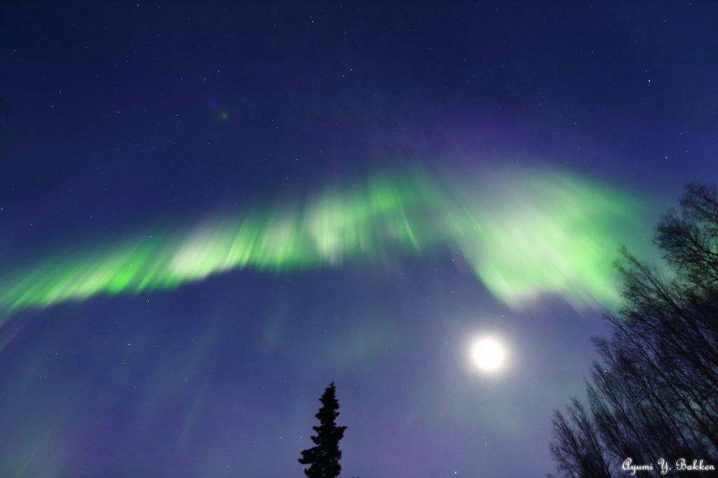 Auroras boreales y la Luna desde Alaska, Estados Unidos – El Universo Hoy