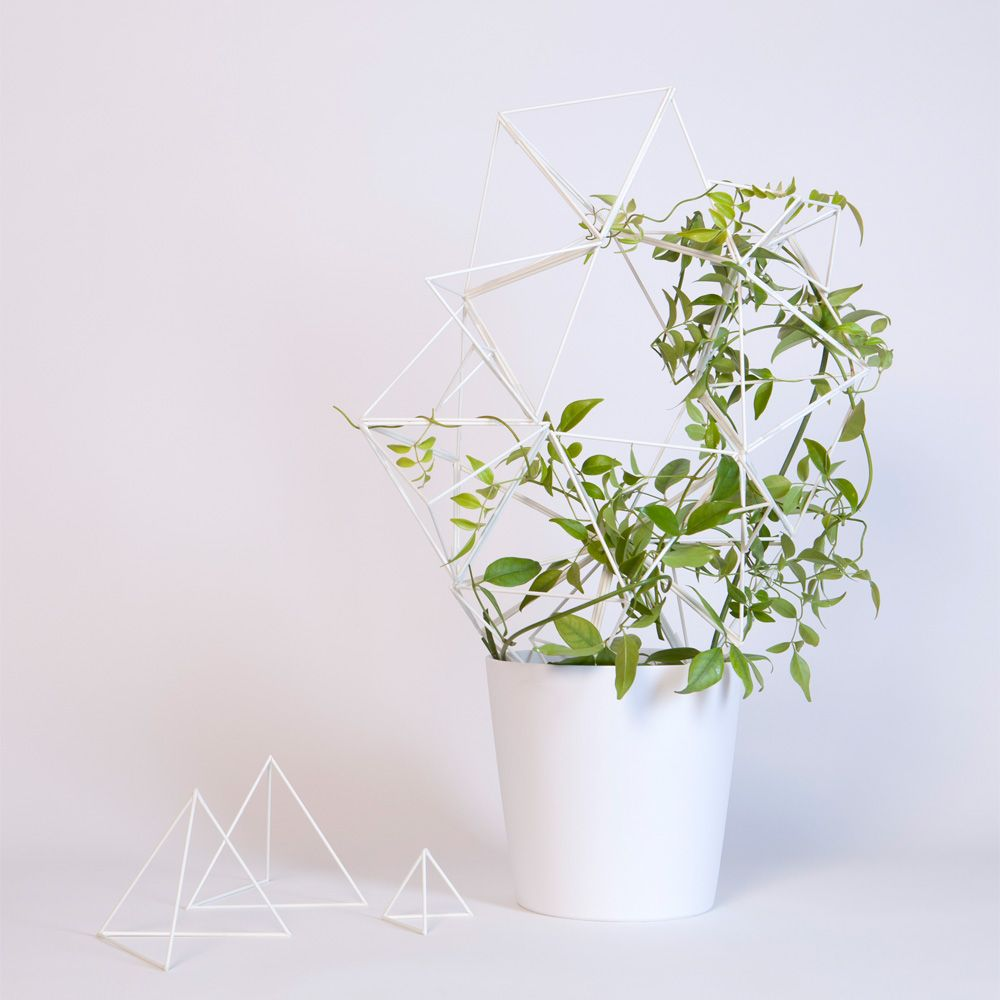 For crawling plants
