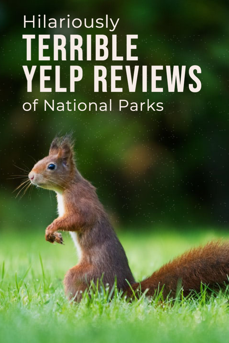 Hilarious Terrible Yelp Reviews of National Parks Funny